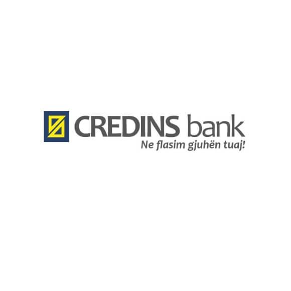 logo-credins