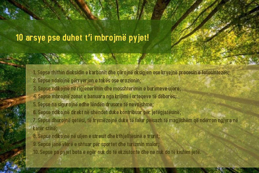10 arsye per pemet cover (1)